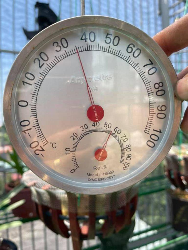 Nhiệt ẩm kế treo tường TH600B hiệu chuẩn